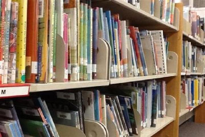 Sadhu Ram Vidya Mandir-Library