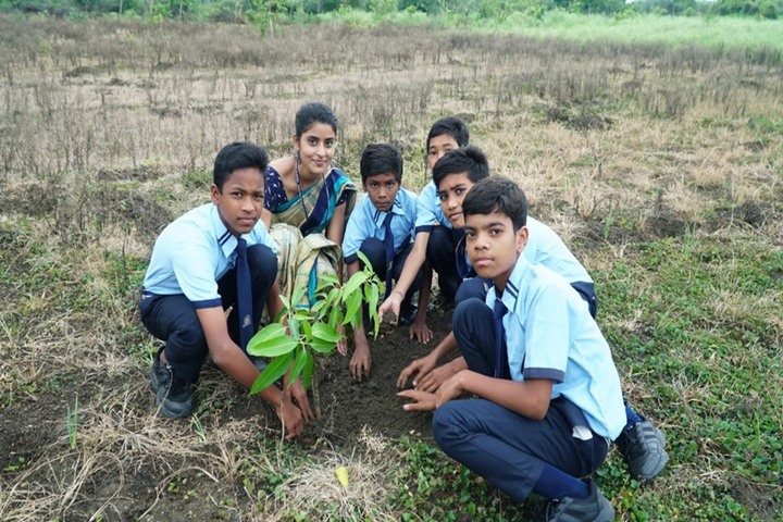 Sanskar City International School-Tree Plantation