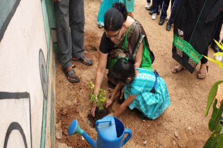 Shri Rawatpura Sarkar International School-Plantatrion