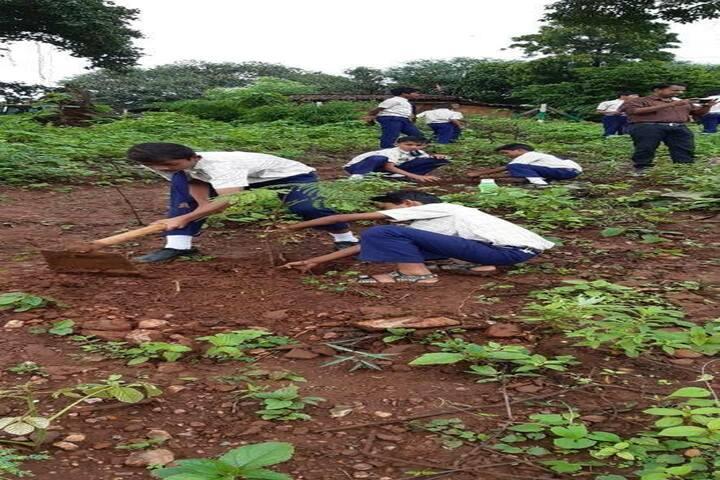 Shri Sai Baba School-Plantation