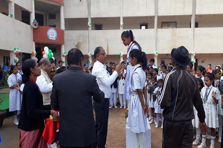 Shri Shankaracharya Public School-Achievements