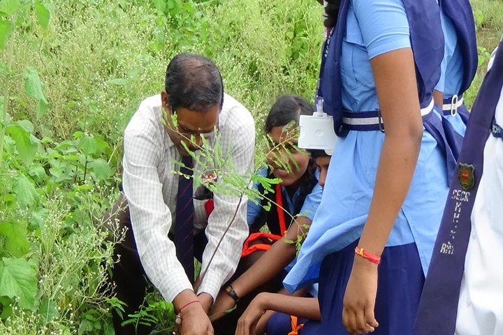 South East Central Railway Mixed Higher Secondary School-Tree Plantation