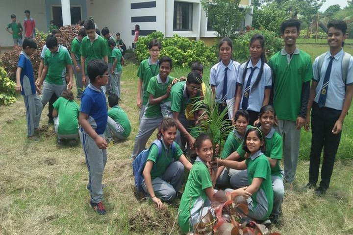 St. Vincent Pallotti International Residential School-Tree Plantation