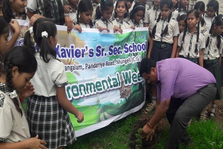 St Xaviers Senior Secondary School-Plantation