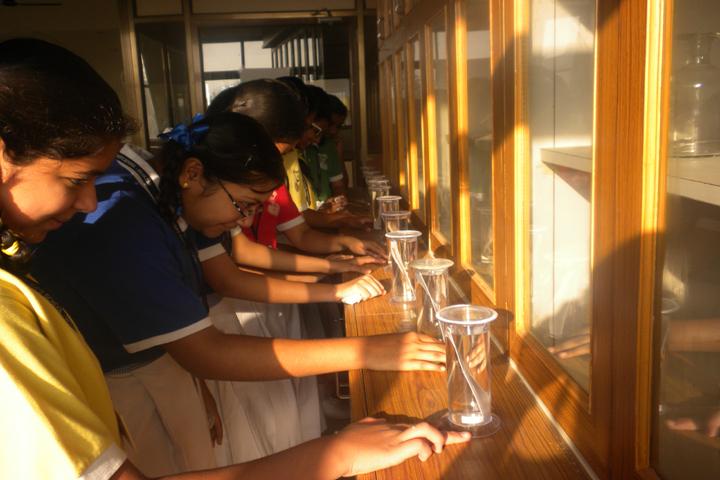 St  Xaviers School-Biology Lab