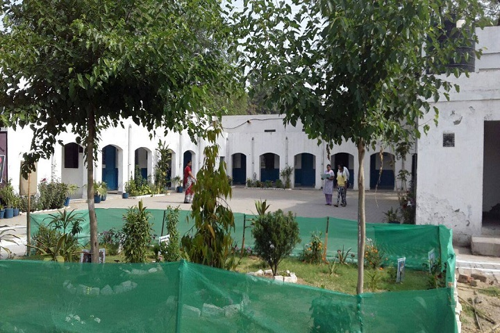 Air Force Gyan Jyoti School-School Area