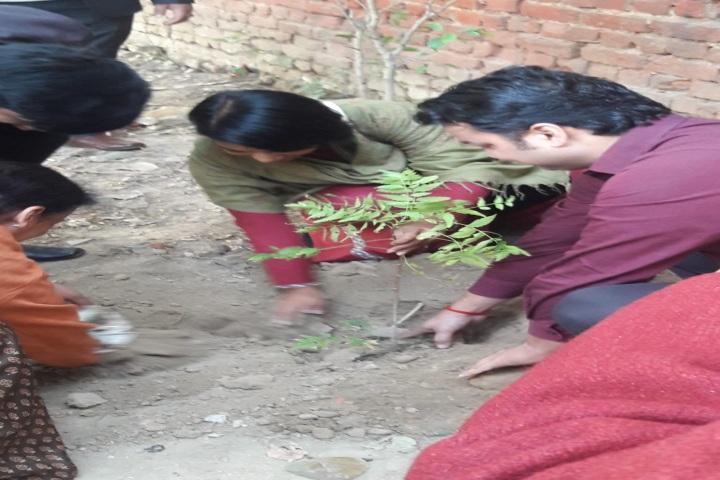 Bidhan Chandra Vidyalaya Senior Secondary School- Rain Water Harvesting