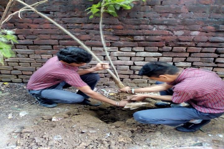 Bidhan Chandra Vidyalaya Senior Secondary School-Activities