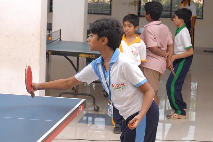 Little Woods School-Indoor Games