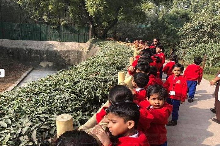 D A V Public School-Excursion