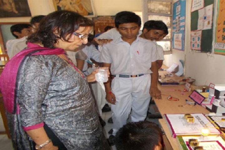 Diwan Chand Arya Senior Secondary School-Science Exhibition