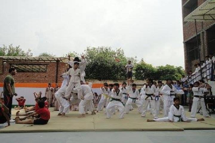 DAV Ashok Vihar-Arts