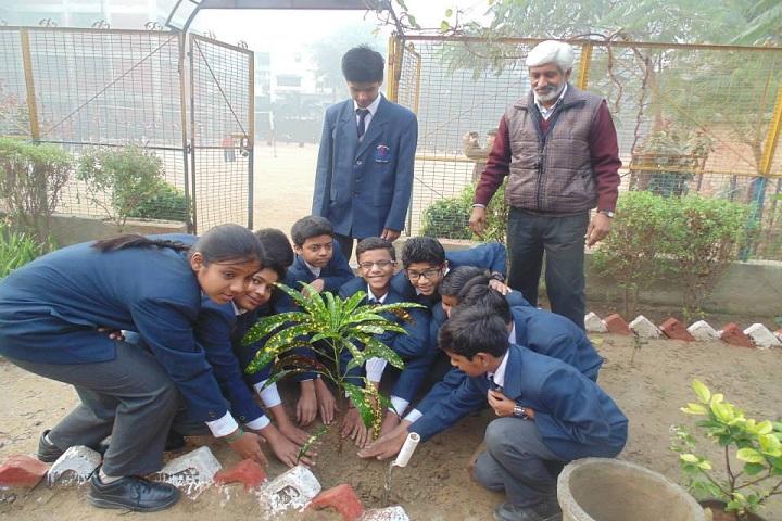 DAV Ashok Vihar-plantation day