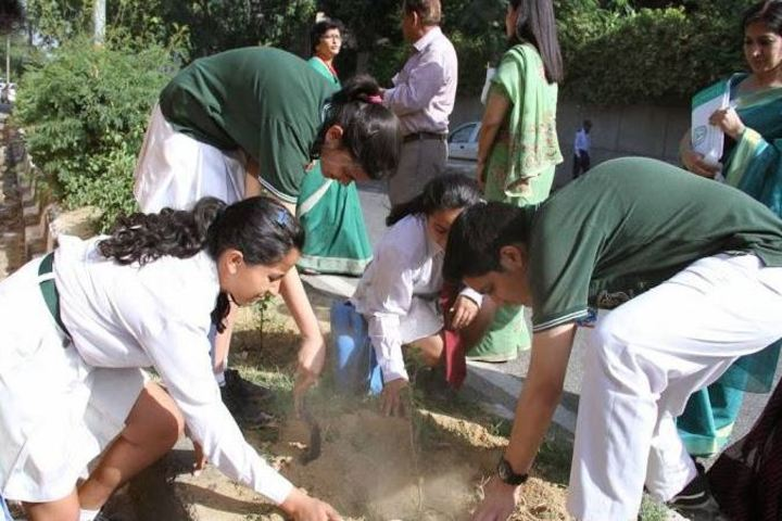 Delhi Public School-Tree Plantation