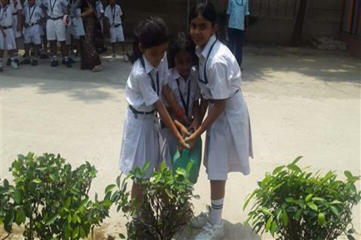 Delhi Public School-Tree Plantation