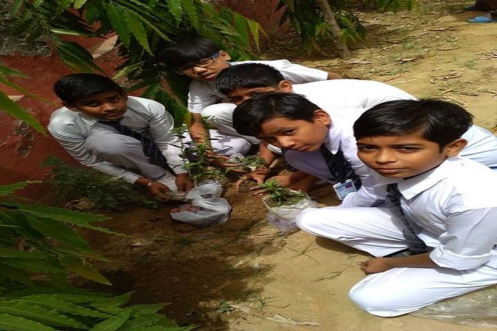 Fair Child Public School- Activities 2