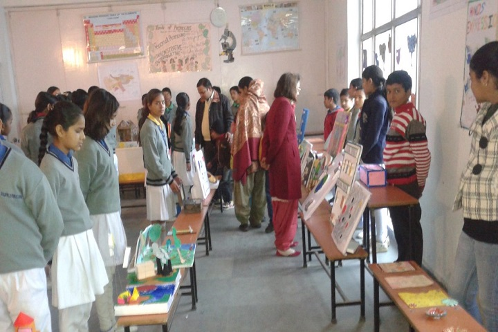 Gold Field Public School-Exhibition