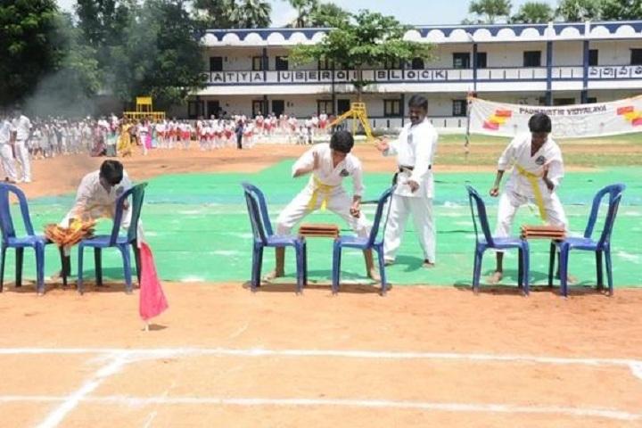 Padmavathi Vidyalaya-Karate