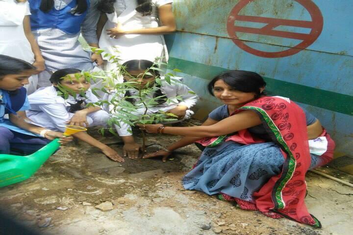 Government Girls Senior Secondary School No 1-Tree Plantation