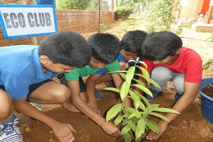 Sree Vidya Nikethan International School-Tree Plantation