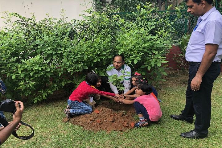 Gyan Bharati School-Plantation