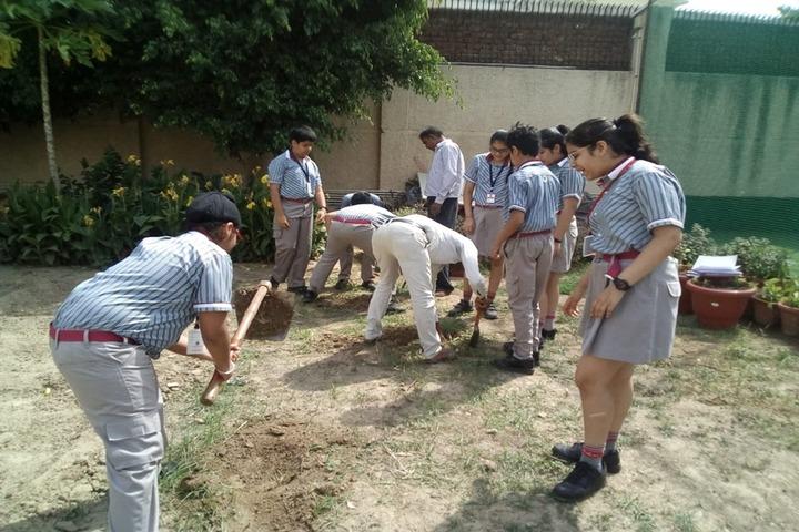 K R Mangalam World School-Tree Plantation