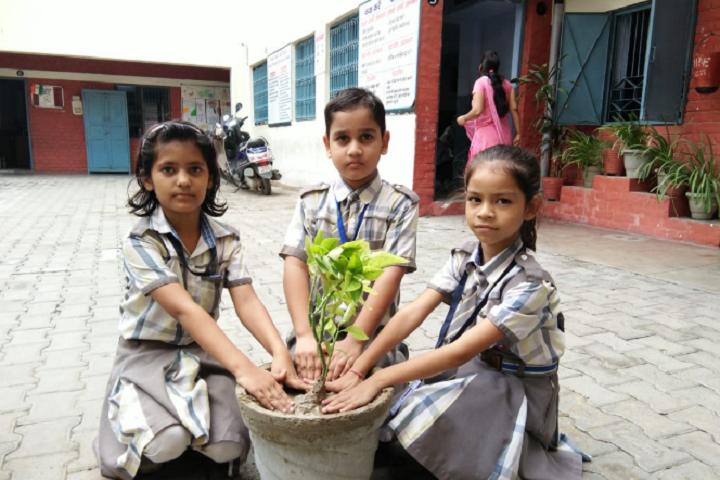 Krishna Model Secondary School-Plantation