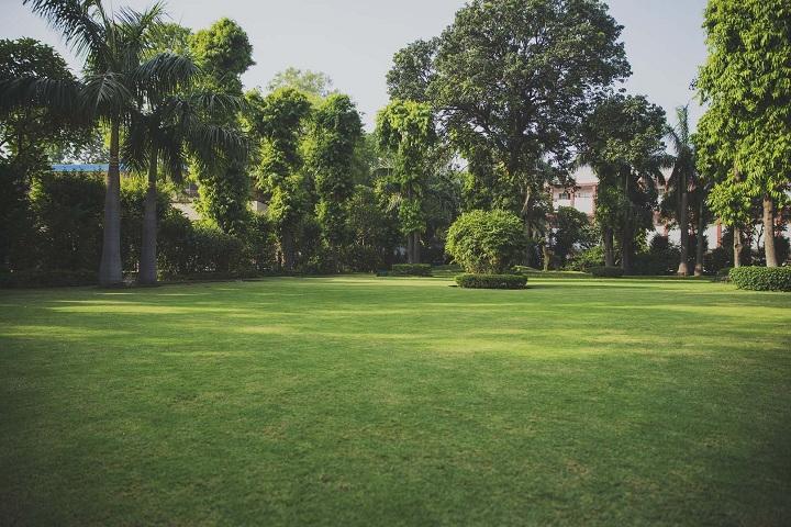 Lilawati Vidya Mandir Senior Secondary School-garden