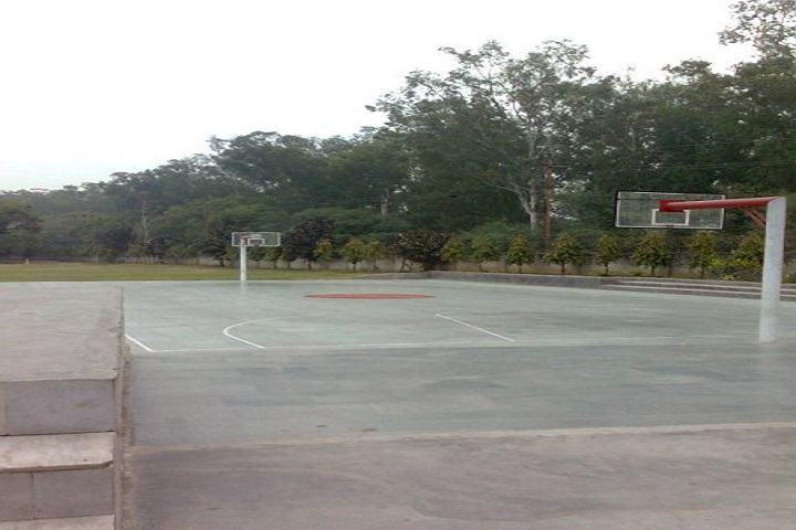 Maharaja Aggarsain Adarsh Public School- Playground