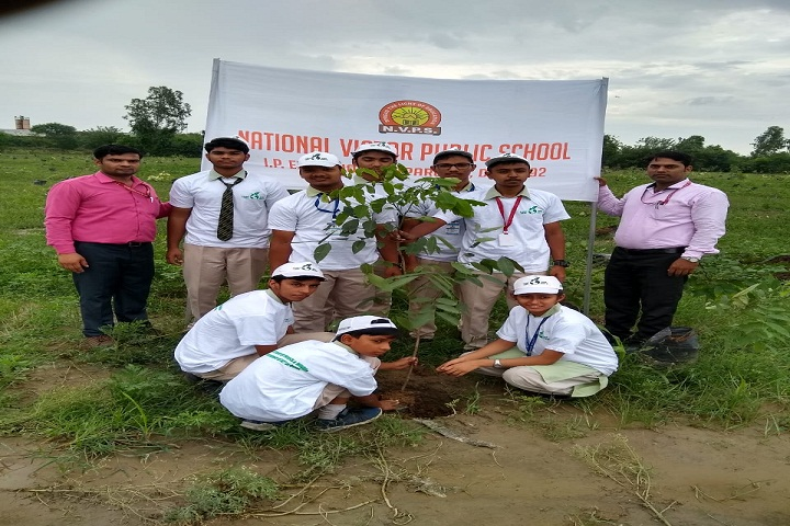 New Holy Public School-Tree-Plantation