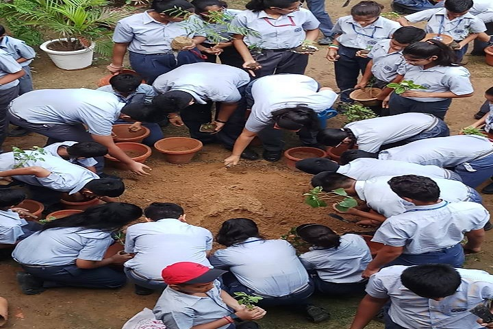 Ramjas Public School-Plantation