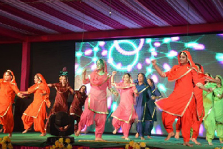 Red Roses Public School-Annual Day Celebration