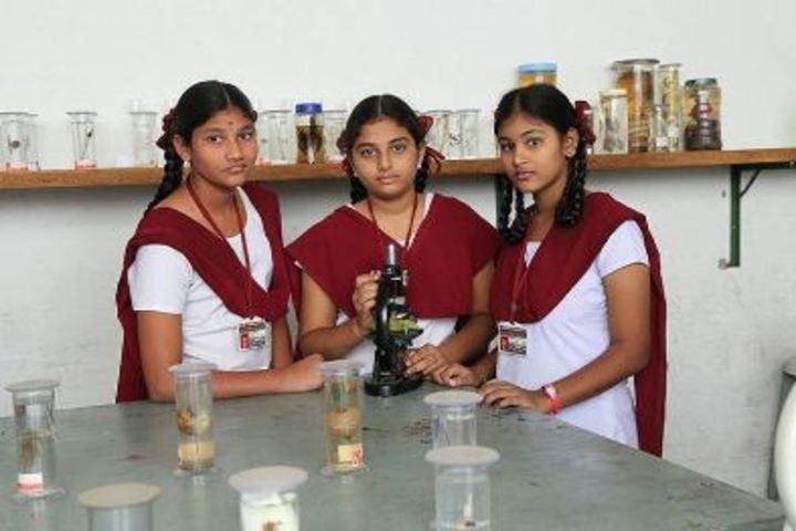 Viswasanti English Medium High School-Lab
