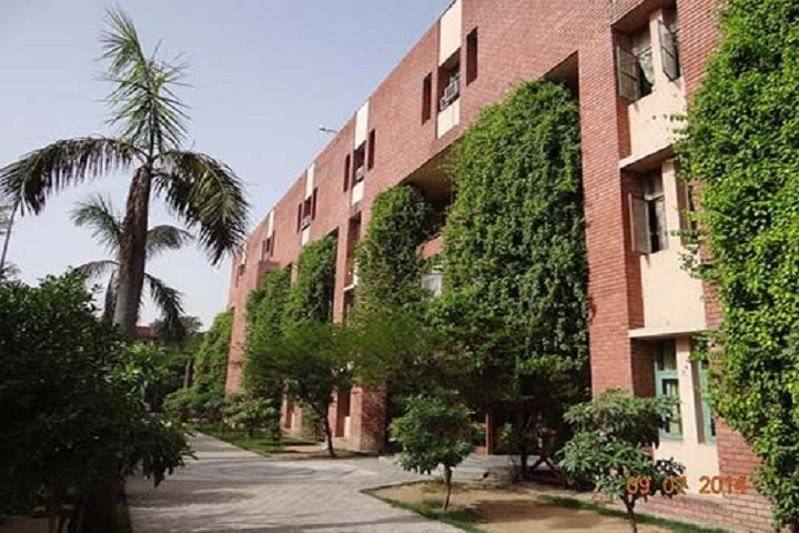 The Banyan Tree School-Campus