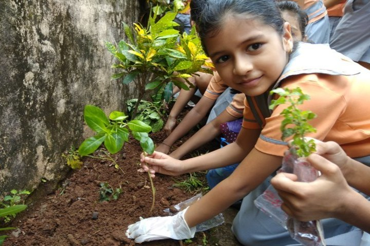 Bloomz International School-Tree Plantation