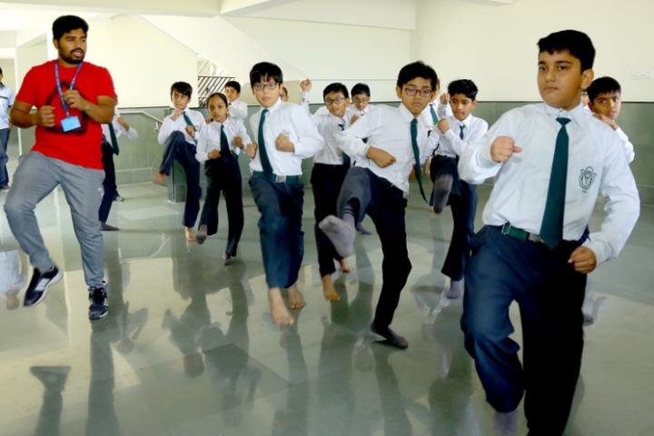 Delhi Public School-karate classes