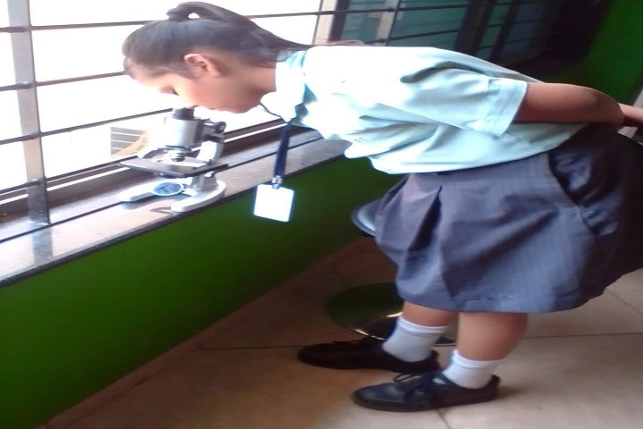 Global Discovery School-Biology Subject Activity