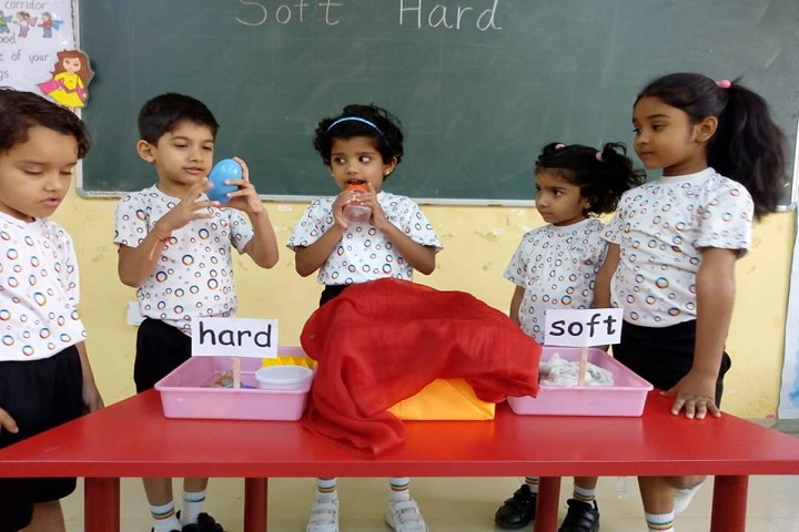 Global Indian International School-Soft Hard Activity