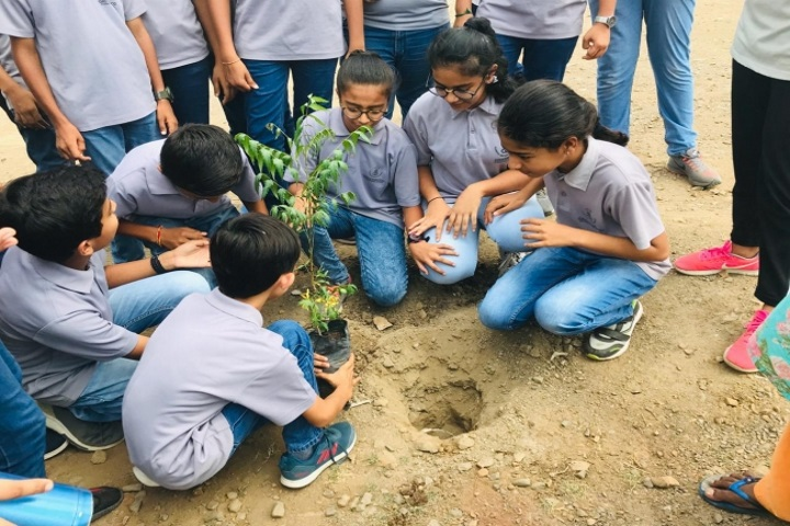 Greenwood School-Tree Plantation