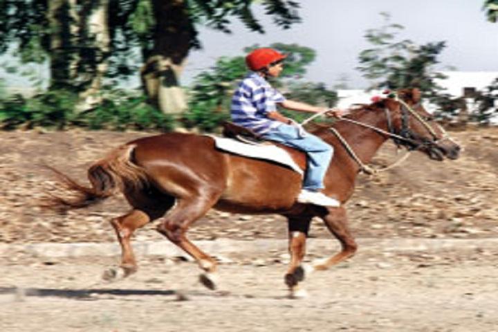 Sunflower Global School-Horse Riding