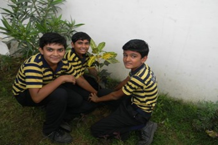 Urmi School-Plantation