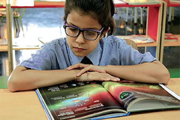 Apeejay Svran Global School-Library