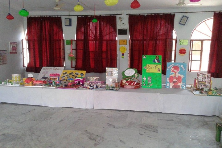Baba Ram Das Vidyapeeth-school exhibition