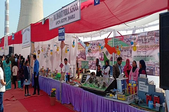 Bal Bharati Public School-Exhibition