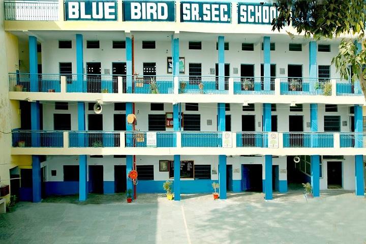 Blue Bird Senior Secondary School- campus