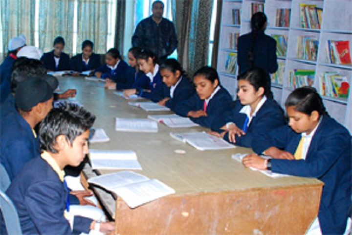 British Public School- library