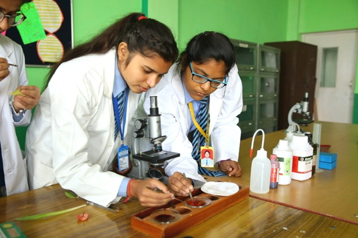 C D Foundation Of Education-Biology Lab