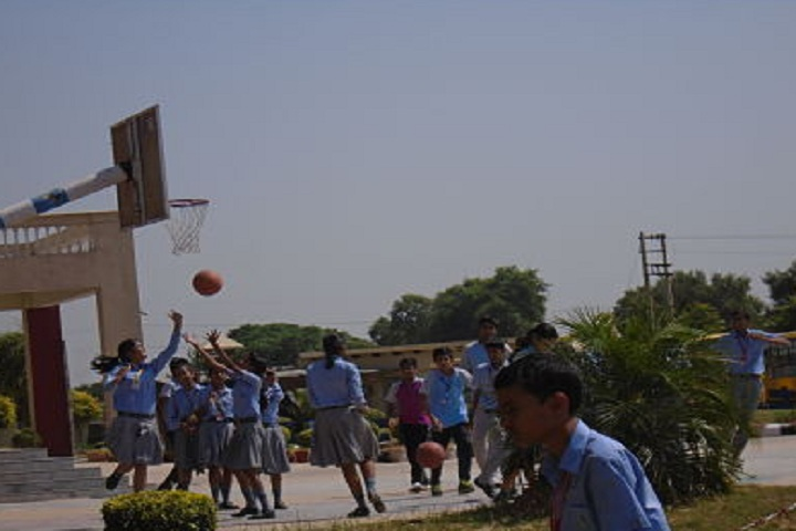 C D Foundation Of Education-Sports basketball