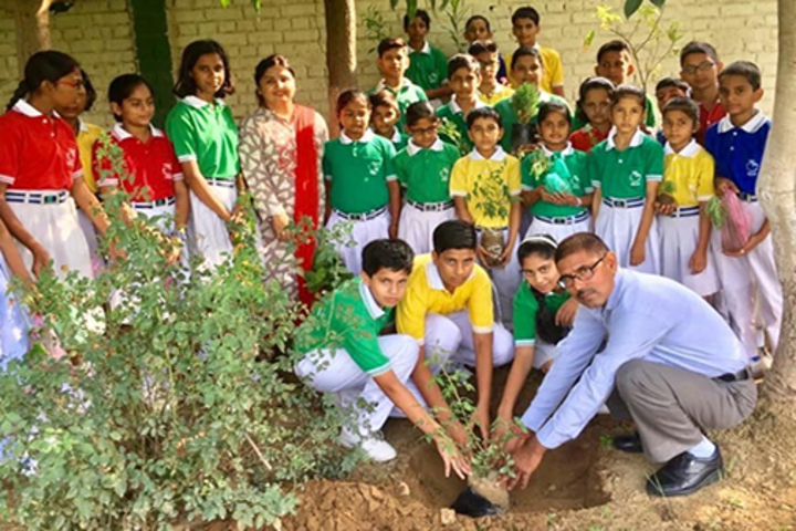 Canal Valley Public School-Plantation