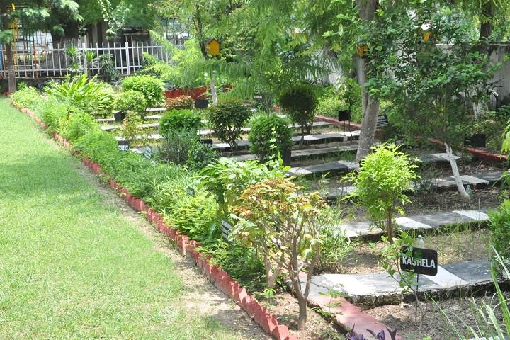 Chamanlal D A V Senior Public School-Herbal